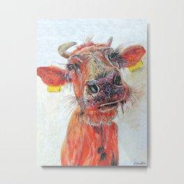 skinny ribs, highland cow Metal Print