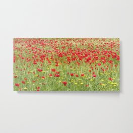 Meadow With Beautiful Bright Red Poppy Flowers  Metal Print