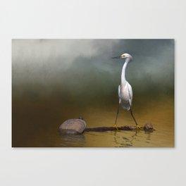 Great Egrets II Canvas Print