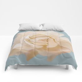 IVORY ROSE Comforters