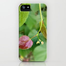 new leaf spring iPhone Case