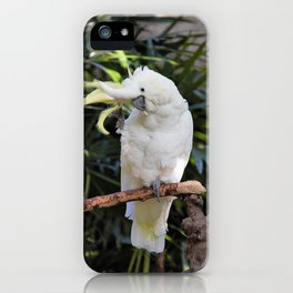 Sulfur-Crested Cockatoo Salutes the Photographer iPhone Case