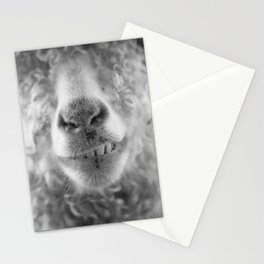 Cheezy Mohair Stationery Cards