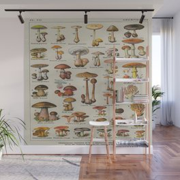 Mushrooms Vintage Scientific Encyclopedia Lithograph French Language Edible & Poisonous Mushrooms Wall Mural