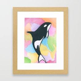 Orca In Watercolor Framed Art Print