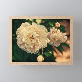 Fleeting Blooms Framed Mini Art Print
