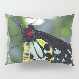 Cairns Birdwing Butterfly Pillow Sham