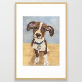 Cute Terrier Mix Framed Art Print
