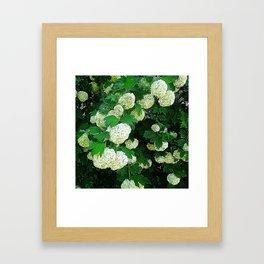 JC FloralArt 08 Framed Art Print