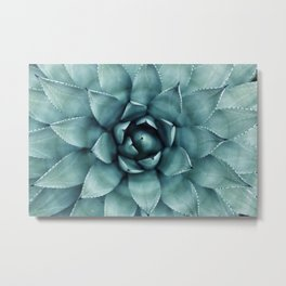 Aloe Green Agave Metal Print