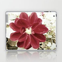 Maroon 3 Laptop & iPad Skin