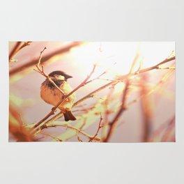 Morning sparrow Rug
