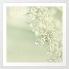 White Blooms Art Print