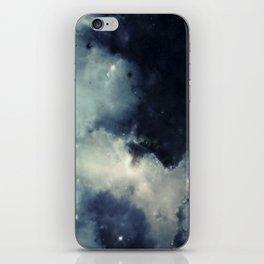 ζ Hydrobius iPhone Skin