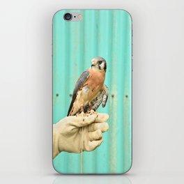 American Kestrel Falcon Bird Wildlife Northwest iPhone Skin