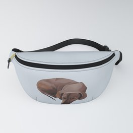 Billy Fanny Pack