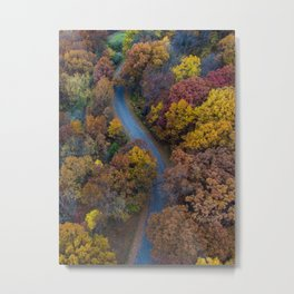 Bird's eye view of a winding road among autumn trees Metal Print