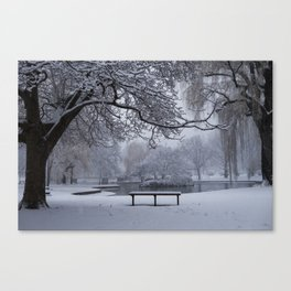 Snowy Tree The Public Garden Boston MA Bench Black and White Canvas Print