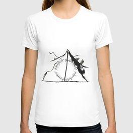 Mixed fandoms T-shirt