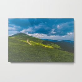 Mountain Forest Valley Metal Print
