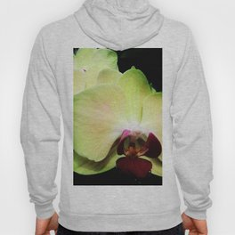 Green Orchids Hoody