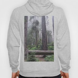 a walk in the park Hoody