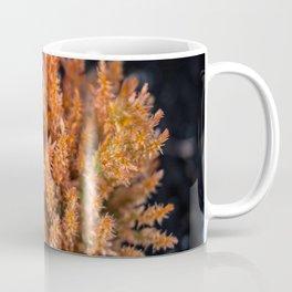 Orange Celosia Coffee Mug