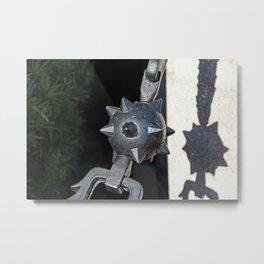 Touching the Wild II Metal Print