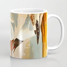Bonapartian Gull Coffee Mug
