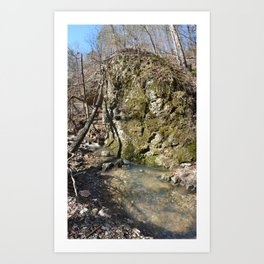 Alone in Secret Hollow with the Caves, Cascades, and Critters, No. 11 of 21 Art Print
