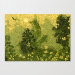 Summer lawn Canvas Print