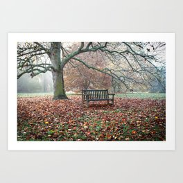 Autumn Sings in Silence Art Print