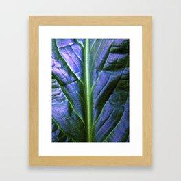 Purple Green Leaf Framed Art Print