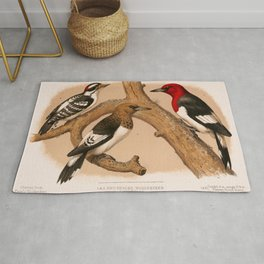 Woodpeckers 1874 restored lithograph Rug