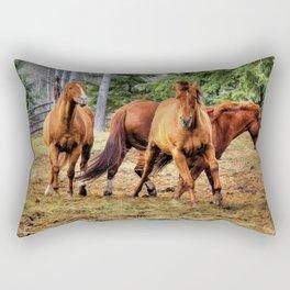 Horse Play Rectangular Pillow