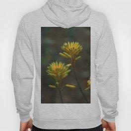 Yellow Blossoms Hoody