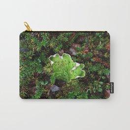Lichen Light Carry-All Pouch