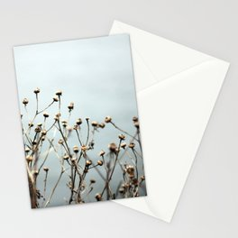 Blue Weeds Stationery Cards