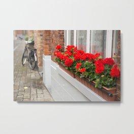 Red Geraniums, Bruges Metal Print