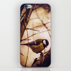 unchained iPhone & iPod Skin