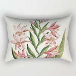 Robert Jacob Gordon - Gladiolus carneus D. Delarochev - 1777 - 1786 Rectangular Pillow
