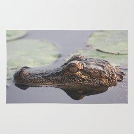 American Alligator Rug