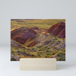 Warm evening light at Painted Desert Mini Art Print