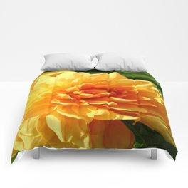 Dahlia Macro Comforters