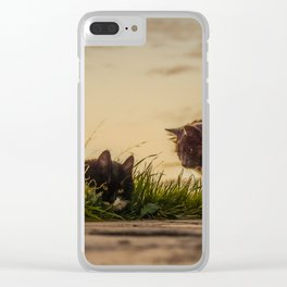 Stray cats Clear iPhone Case