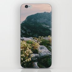 Mountain flowers at sunrise iPhone & iPod Skin