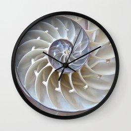 Nautilus Shell Wall Clock