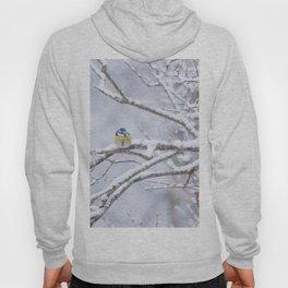Blue Tit On A Snowy Branch Winter Scene #decor #society6 Hoody
