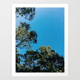 clear blue Art Print