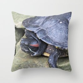 Redeared Slider Throw Pillow